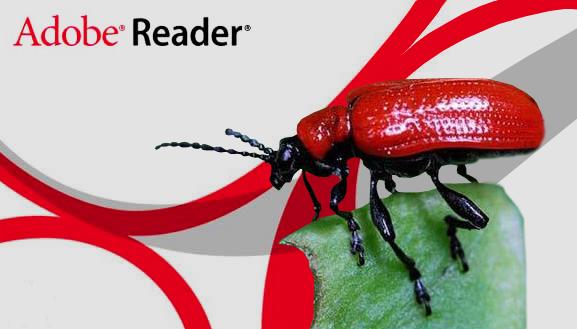 0 day уязвимость в Adobe Reader 10 и 11