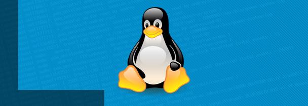 Стартовал онлайн курс «Введение в Linux» от Linux Foundation