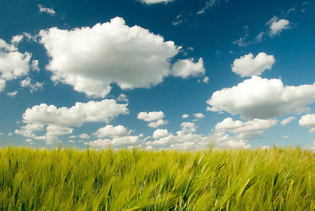 Разбираем рекламные преимущества облачных хостингов: ответ облачного провайдера
