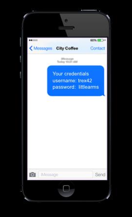 Пример присланных по SMS реквизитов доступа