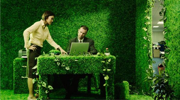 Как мы становились «зелеными»