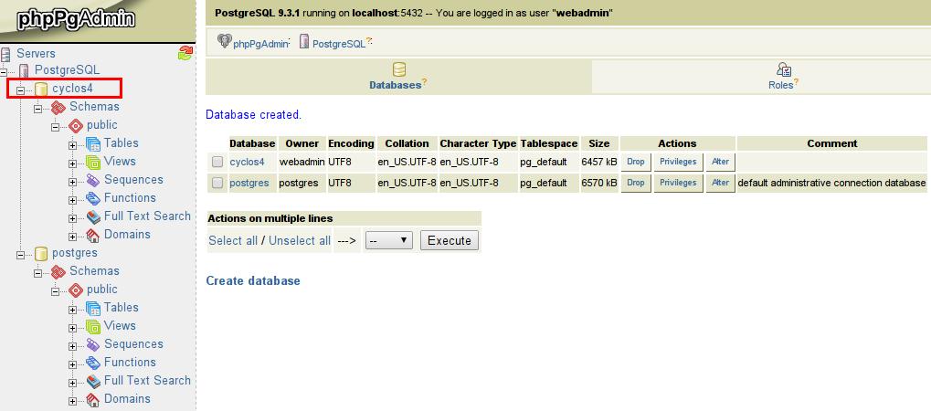master postgresql database