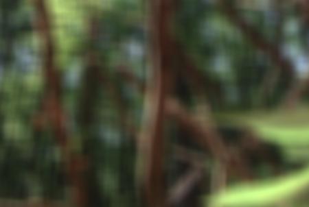 Такой разный Blur
