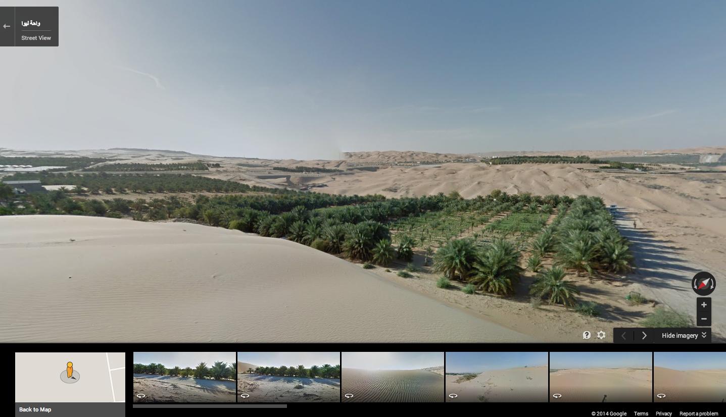Корпорация Google использовала верблюда в пустыне Лива для Google Street View
