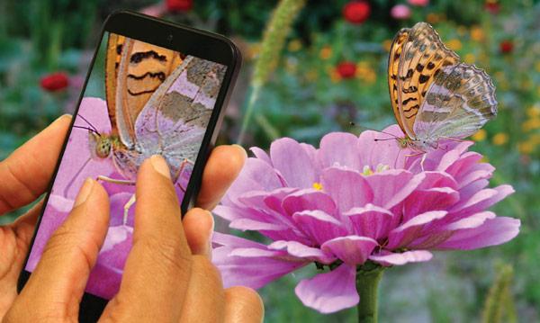 Датчики изображения OmniVision OV23850 и OV23840 разрешением более 20 Мп предназначены для смартфонов