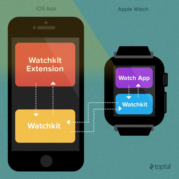 Первый взгляд на Apple Watch SDK - 8