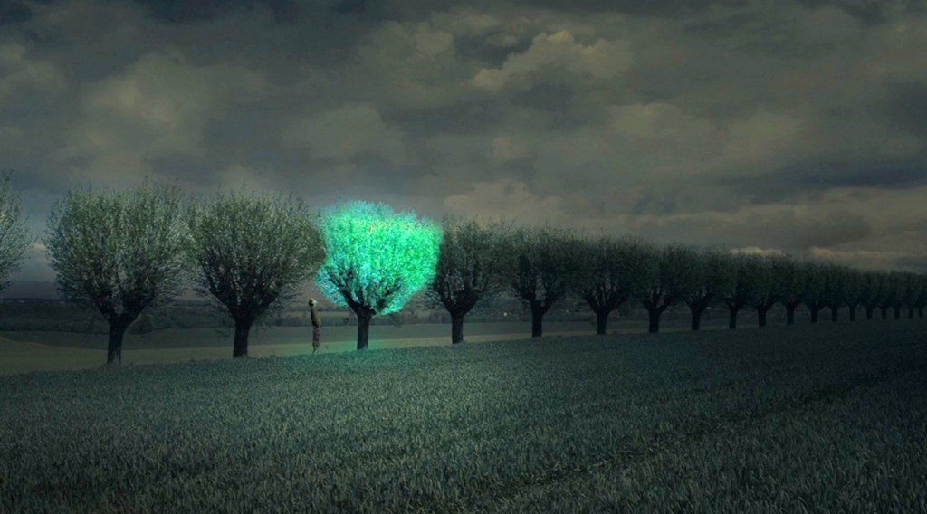 Подсветка городов будущего при помощи биолюминесценции - 3