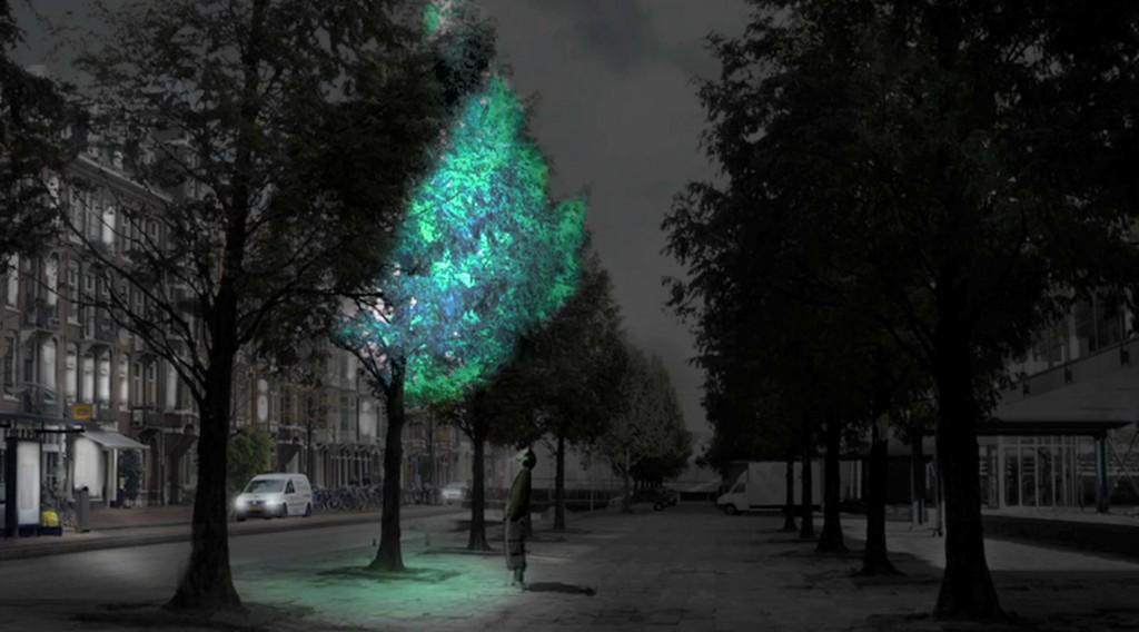 Подсветка городов будущего при помощи биолюминесценции - 1