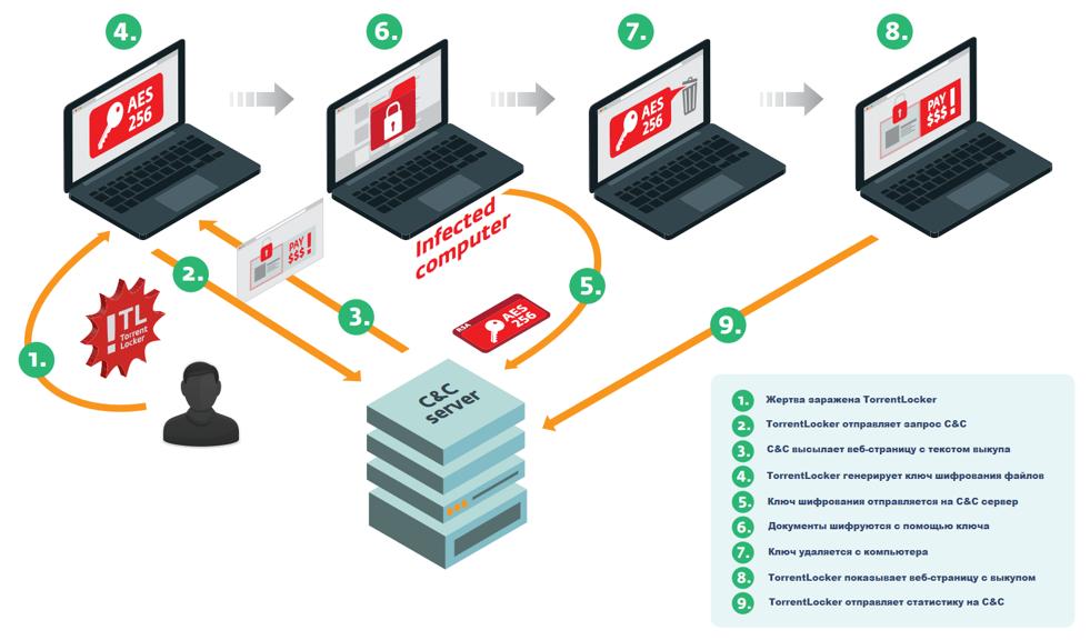 TorrentLocker – новая модификация трояна-шифровальщика FileCoder, часть 1 - 8