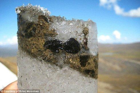 Ученые оживили древний вирус из замороженных фекалий оленей