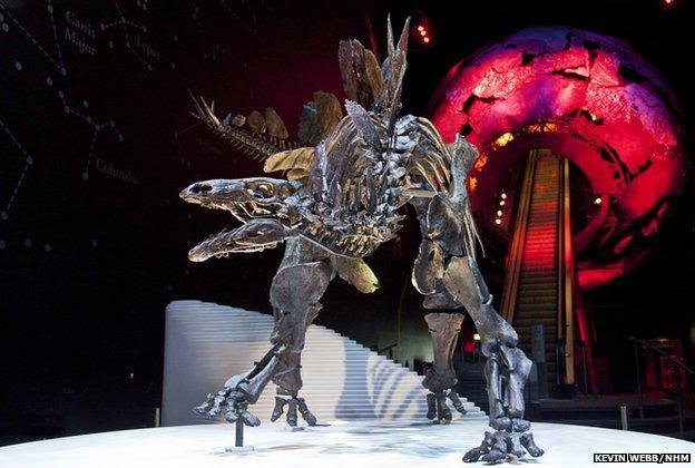 Биологи взвесили динозавра при помощи 3DsMax - 1