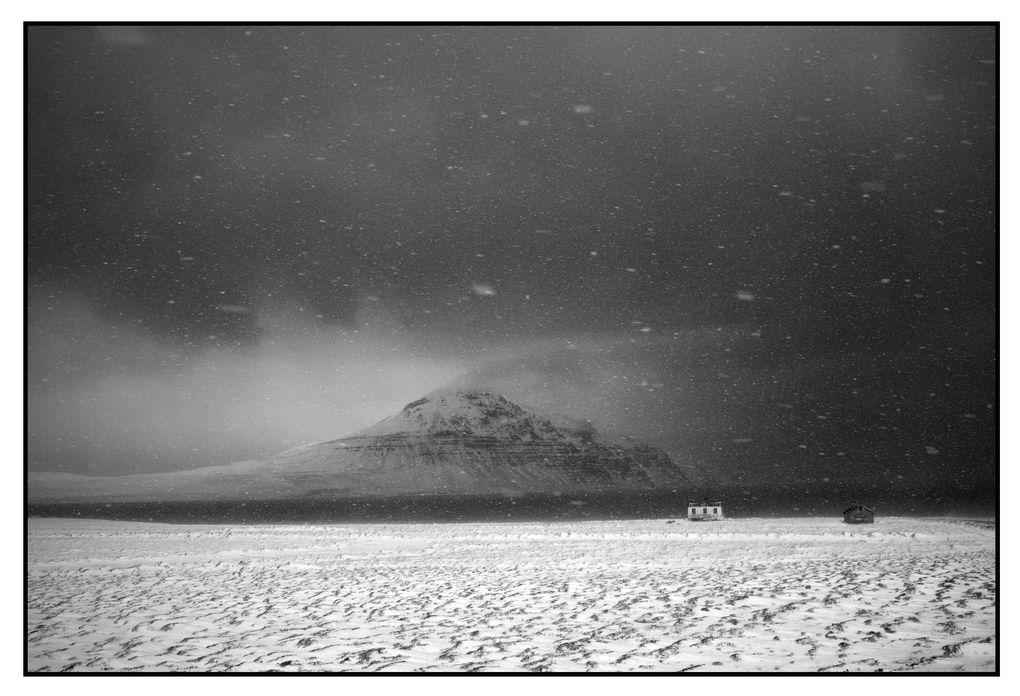 Монохромная камера от Leica за $7450 - 4