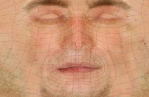 Американские специалисты создали трёхмерную модель человеческой кожи