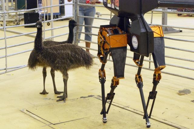 Робот ATRIAS прогулялся по парку - 1