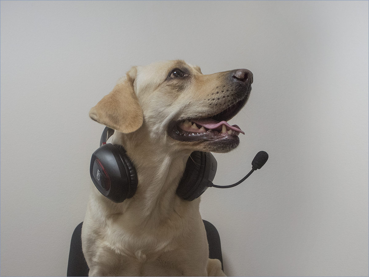 Личный опыт: Creative SoundBlaster Tactic 3D Rage v2 - 12