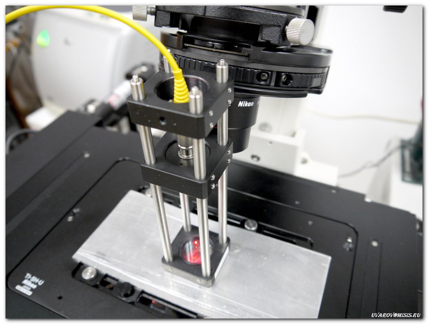 Лаборатории НИТУ «МИСиС»: от разделения наночастиц магнетита до создания квантового компьютера - 12