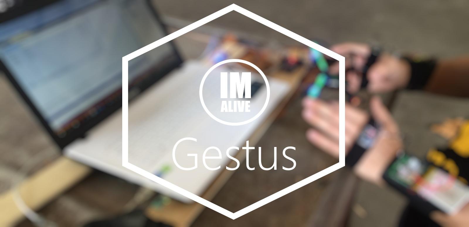 Gestus — контроль радиоуправляемых моделей с помощью жестов - 1