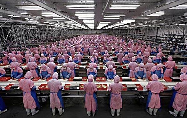 Foxconn вложит в постройку новых объектов в Индии 5 млрд долларов