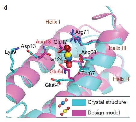 Создан белок для добычи урана из морской воды - 4