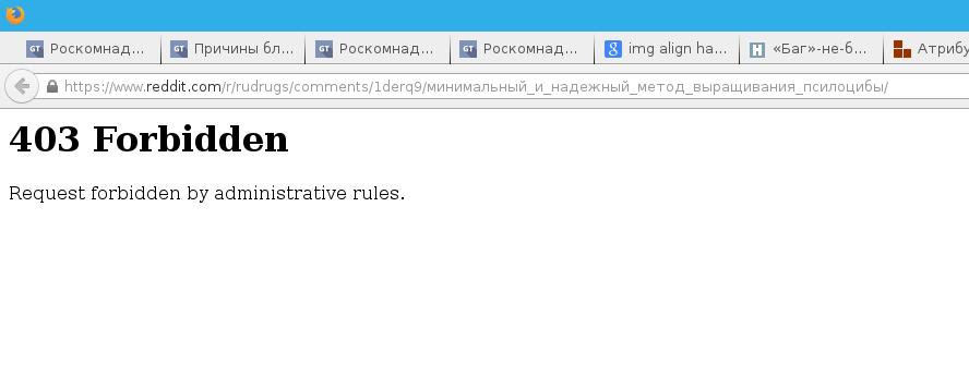 Причины блокировки Reddit Роскомнадзором на территории РФ - 2