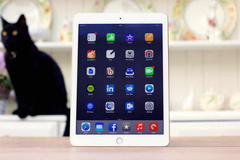 Поставки планшетов iPad в Россию упали в 6 раз - 1