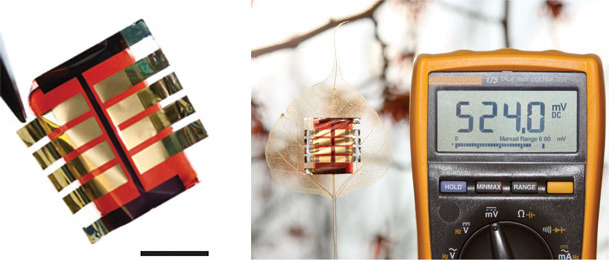 Фотоэлементы из перовскита: пять граммов на квадратный метр - 1