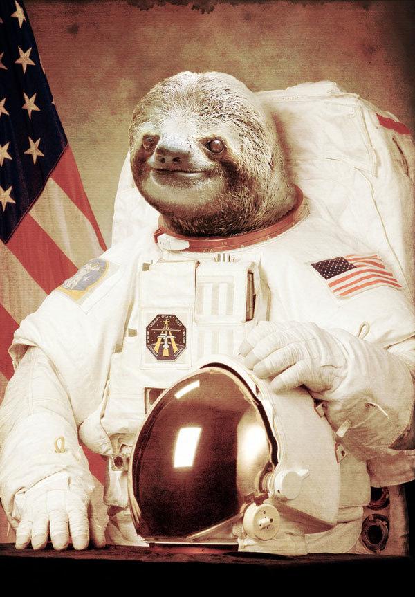 Reddit выбрал, какая картинка отправится на Луну в 2017 году - 1