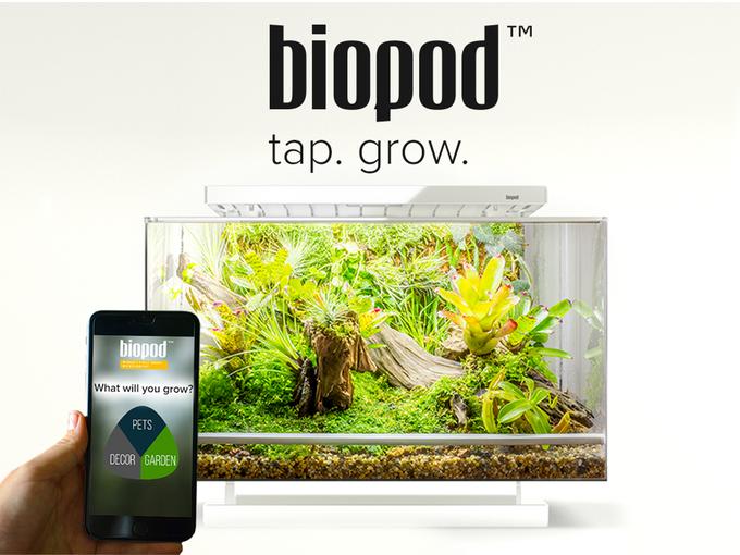 Biopod — умная экосистема в миниатюре с Kickstarter - 1