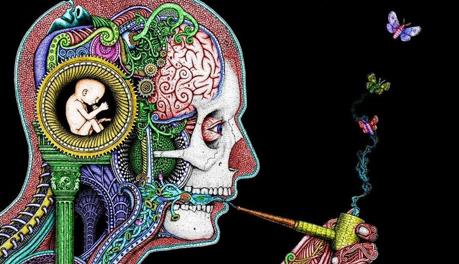 Что происходит с нашим мозгом во время прокрастинации? - 1