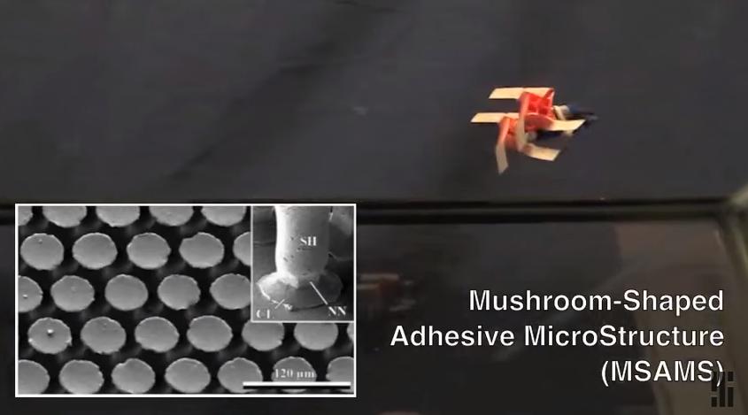 Робот с квадратными колёсами ходит по потолку - 1