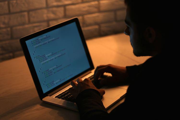 Безопасный ноутбук для журналистов, IT-работников и всех, всех, всех - 1
