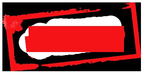 Всем ветрам назло: итоги распродажи 11.11 - 1