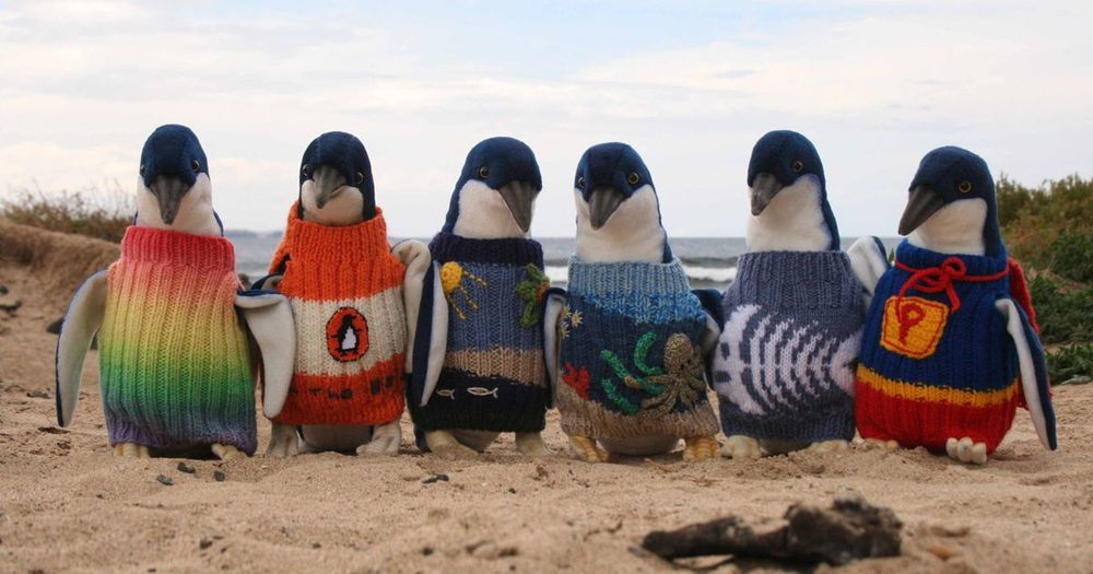 7 свитеров для айтишников - 1