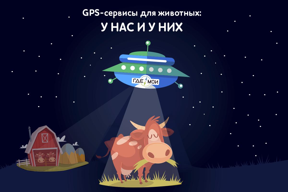 GPS-сервисы для животных: у нас и у них - 1