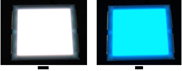 Намечен выпуск трех моделей: OLE-P0505, OLE-P0707 и OLE-P0909