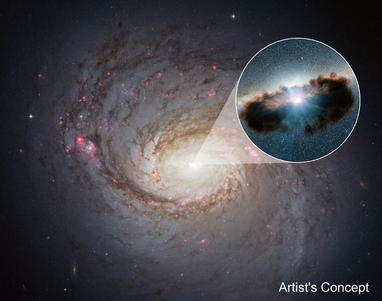 Комковатый «пончик» из газа и пыли вокруг сверхмассивной чёрной дыры - 1