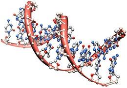 Простой анализ крови выявит сразу пять видов рака - 1