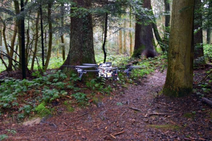 Дроны научились искать людей в лесу - 1