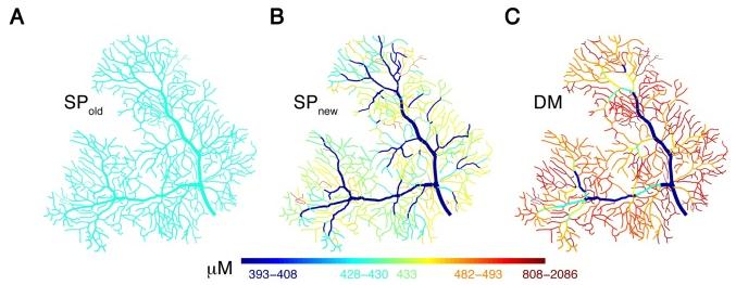 Глубинное обучение и работа мозга: Когда наступит технологическая сингулярность - 2