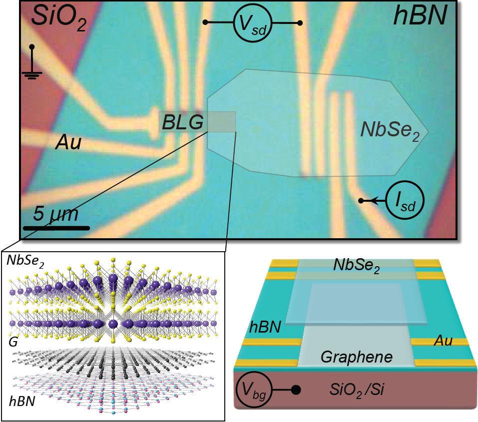 Зеркальные межзонные андреевские отражения на ван дер Ваальсовских контактах между графеном и селенидом ниобия - 1