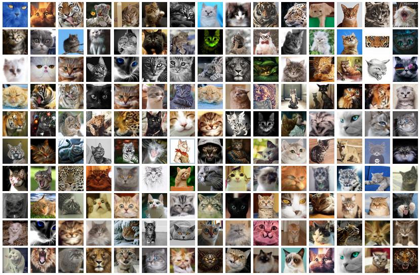 Сколько котов на хабре? - 1