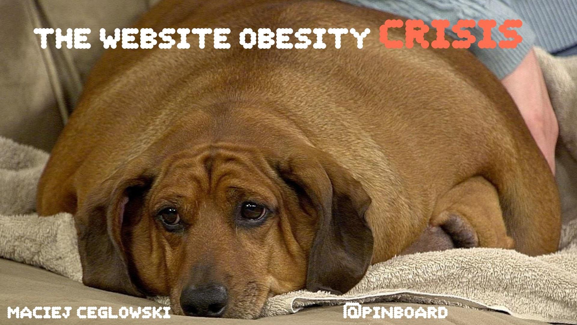 Кризис ожирения сайтов - 1