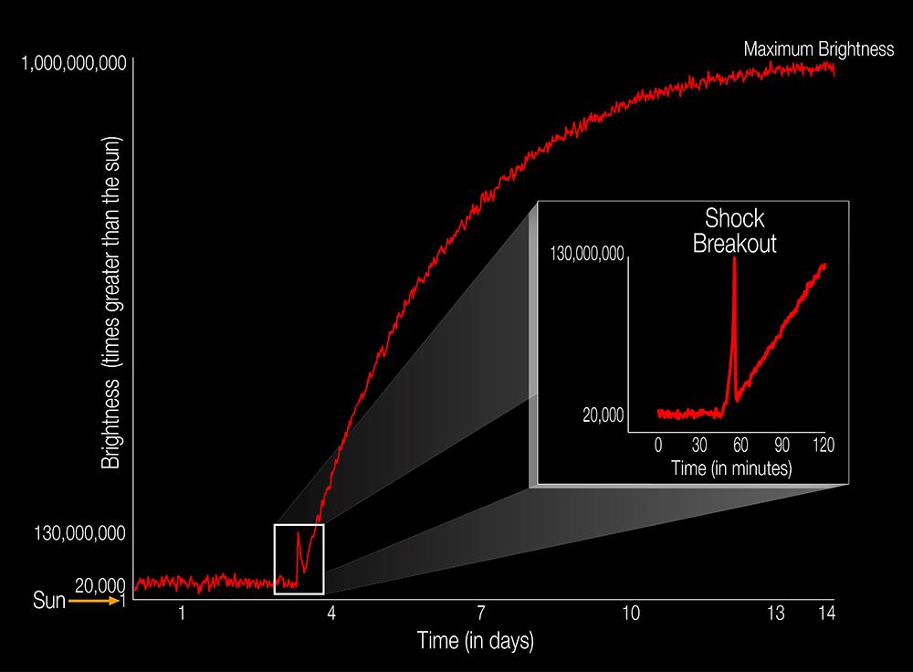 Телескоп впервые снял ударную вспышку сверхновой в видимом диапазоне - 1