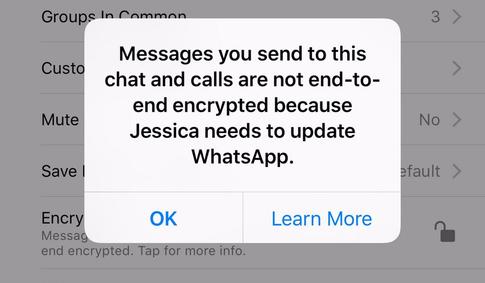 Мессенджер WhatsApp обзавелся полноценным end-to-end шифрованием по умолчанию - 2