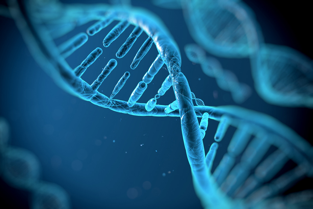 Зарегистрируй свою ДНК или плати: граждан Кувейта обязали сдавать генетический материал - 1