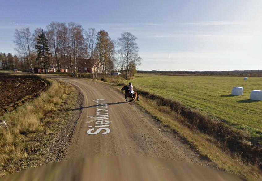 Автомобиль Google напугал лошадь - 2