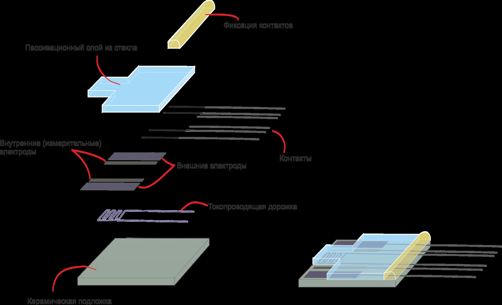 Время неожиданных аналогий: речные раки и датчики электропроводности - 6