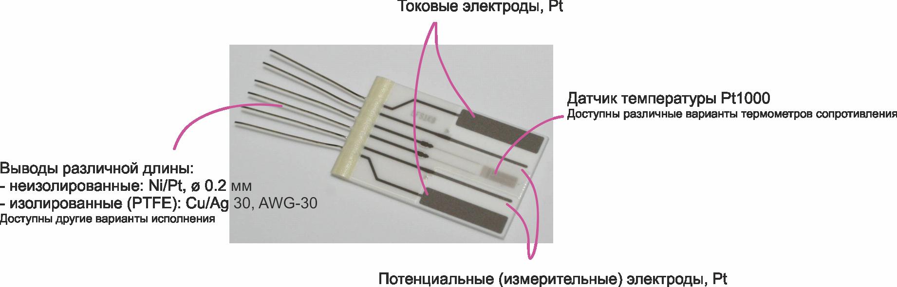 Время неожиданных аналогий: речные раки и датчики электропроводности - 7