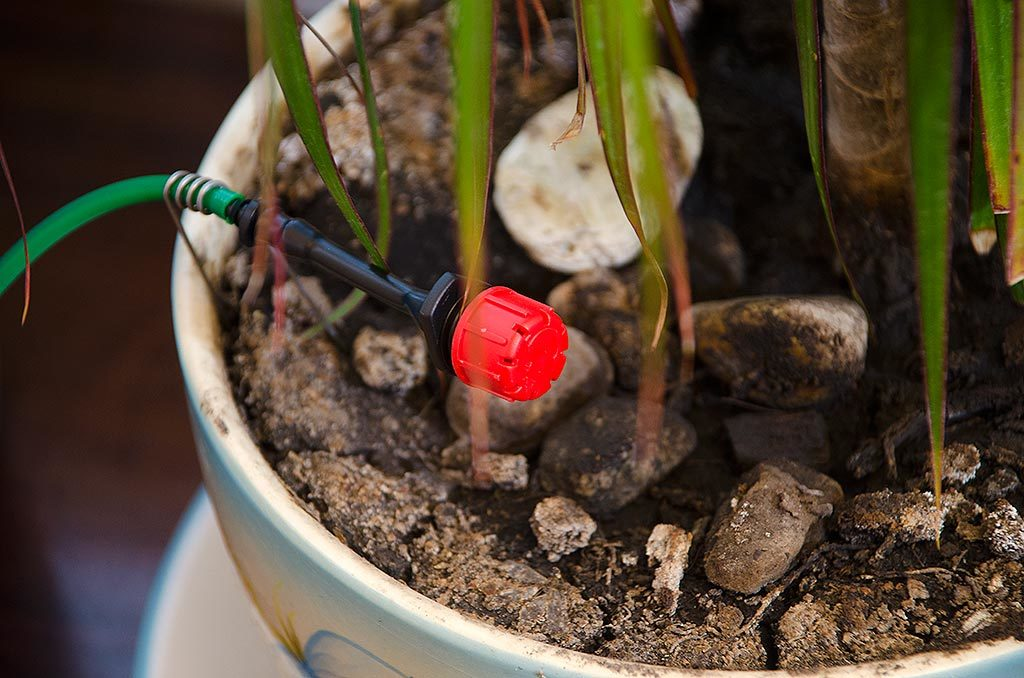 Автолейка: обзор возможностей системы автополива растений для дома или офиса - 1