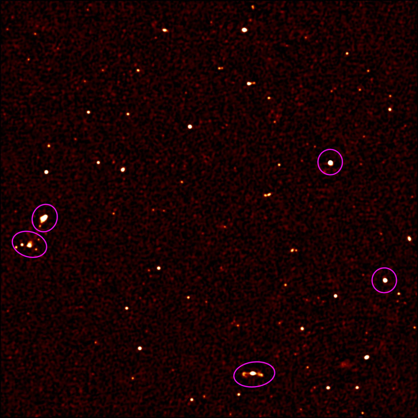 Крупнейший радиотелескоп MeerKAT запустили в тестовом режиме на четверть мощности - 6